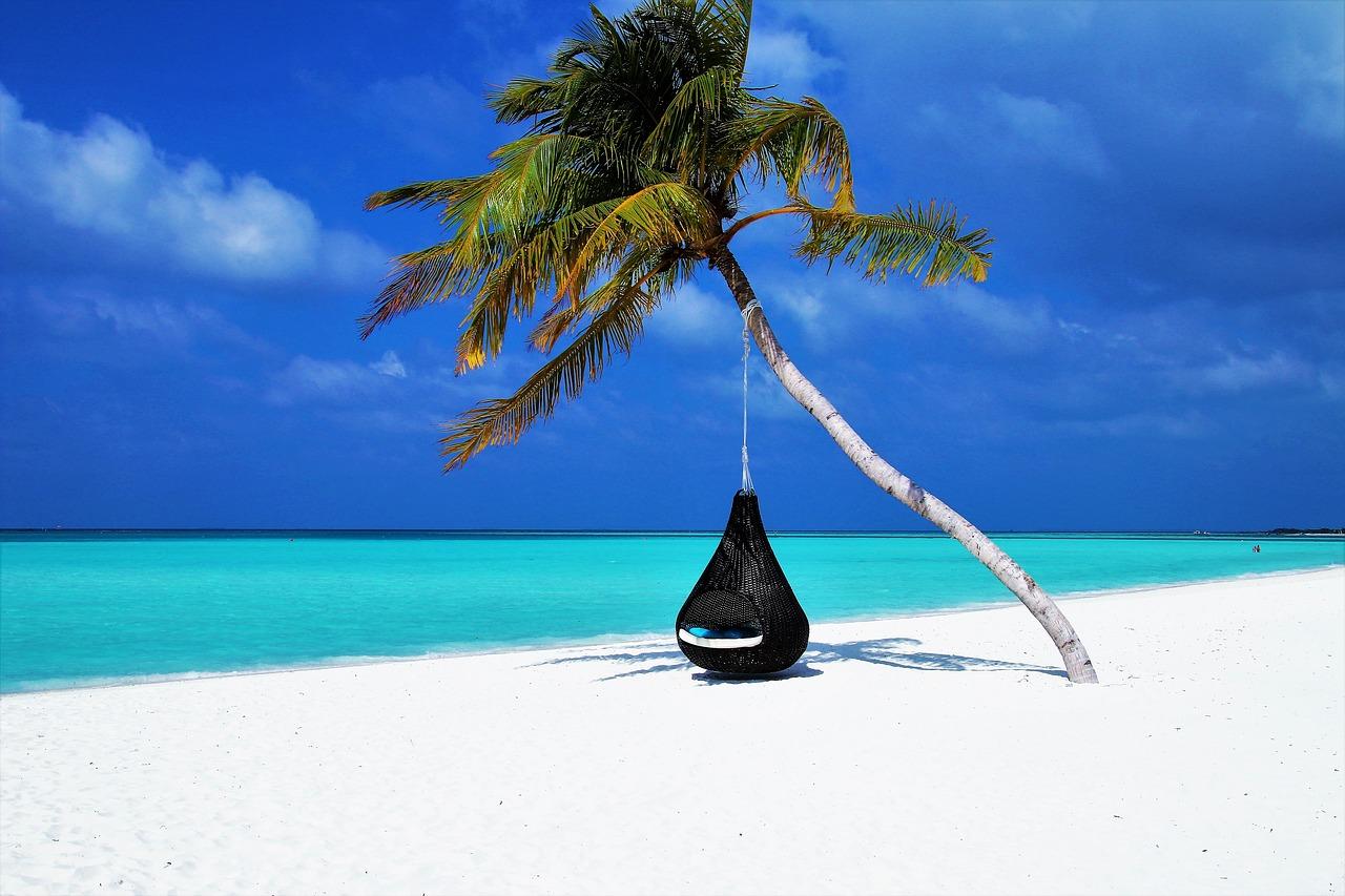 Quelle formation pour travailler dans le tourisme ?