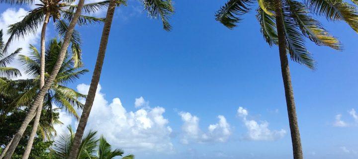 Les sites incontournables de la Martinique